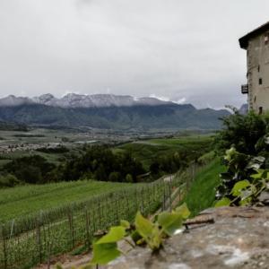 Ambra Casapiccola (Trento)