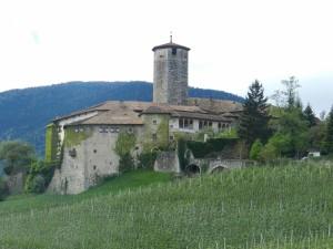 Falaschi Fabio - San Miniato Basso - PI
