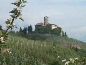 Maioli Giovanni 1
